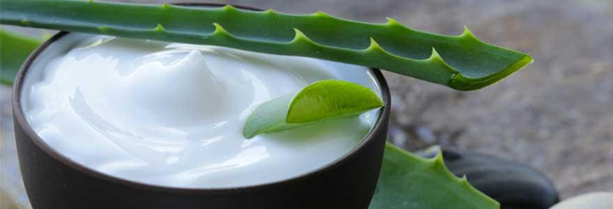Choisir un produit à base d'aloe vera